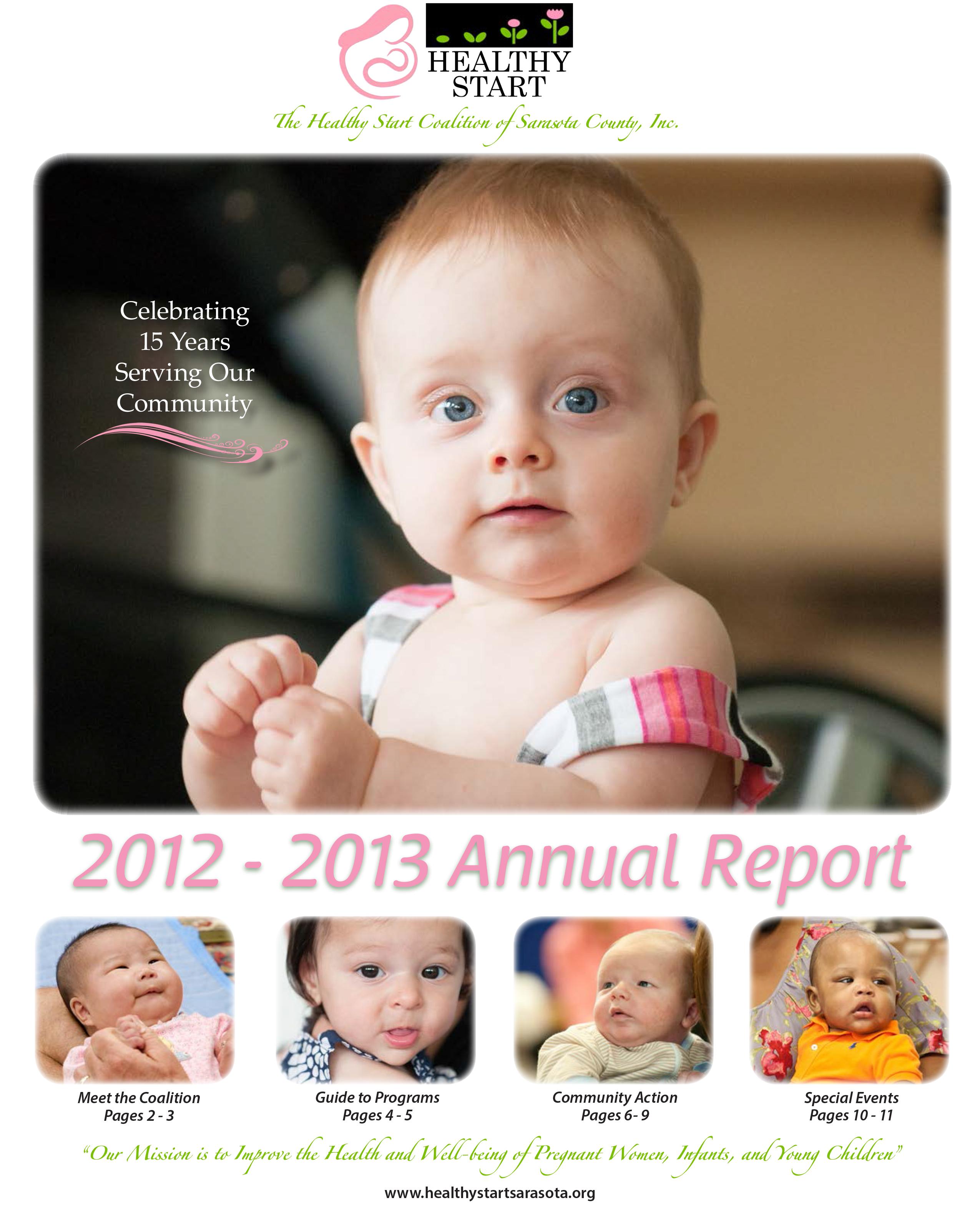 HS2013AnnualReport-Cover Image